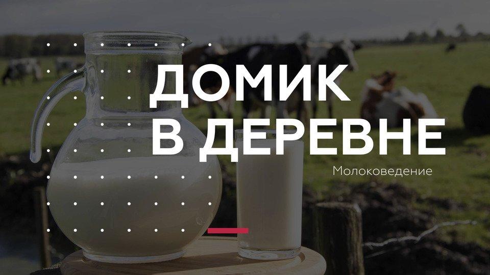 Спецпроект в формате квеста «Молоковедение»